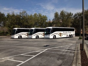 Coach buses lined up in a parking lot.